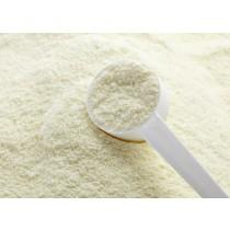 CBV Lactose - 200 gram