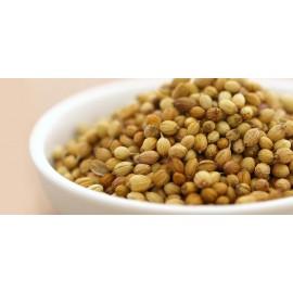 Coriander Seeds - 50 gram